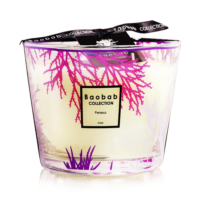Baobab Collection Coral Trilogy Perseus Max 10 79eur