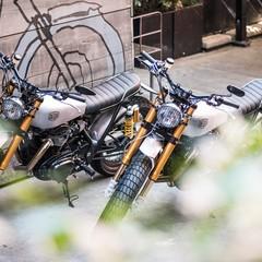 Foto 67 de 99 de la galería kawasaki-w800-deus-ex-machina en Motorpasion Moto