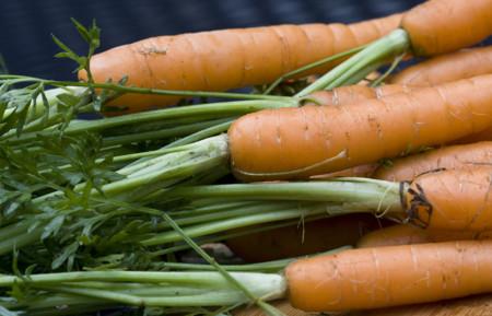 Cascos para moto hechos de zanahorias