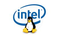 RdRand, Intel y la (poco probable) puerta trasera de la NSA en Linux