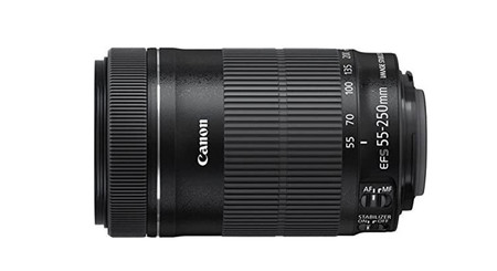 Canon Ef S 55 250mm F40 56 Is Stm