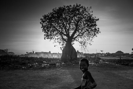 Bernard Benavides Africa 8