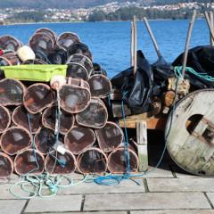 Foto 7 de 19 de la galería canon-eos-m10 en Xataka Foto