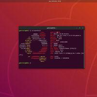 Estas son las características más comunes de los ordenadores que ejecutan Ubuntu en todo el mundo