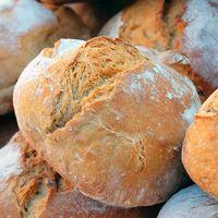 Evidencia arqueológica revela el origen del pan hace 14,400 años