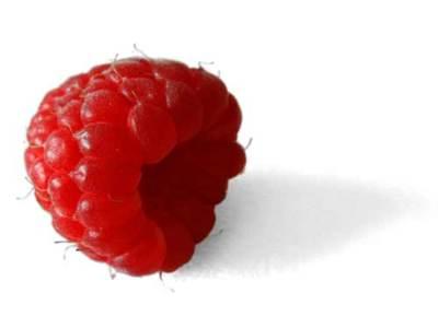 Frutos rojos, una buena opción culinaria que va más allá de las modas