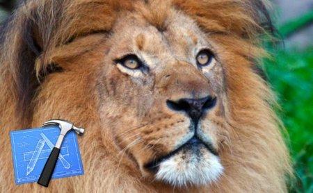 La versión Golden Master de Xcode 4 sugiere una nueva versión beta de Mac OS X Lion