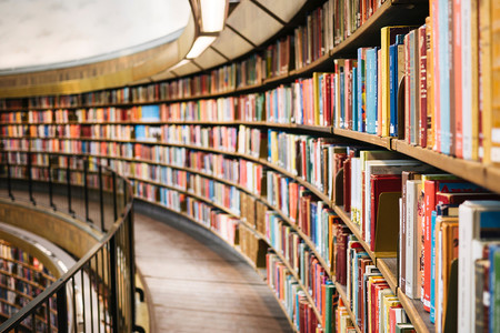 Libreria Publica