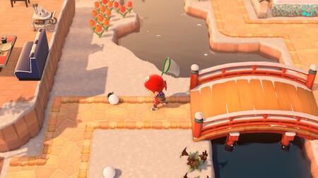 Animal Crossing: New Horizons: cómo capturar al escarabajo pelotero