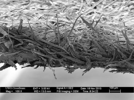 Así es el filo de un papel bajo el microscopio electrónico: la razón por la que los cortes con las hojas y los folios duelen tanto