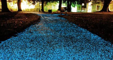 El spray que convertirá tus pavimentos en luminiscentes cuando caiga la noche