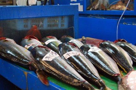 Tokyo: La Lonja del Pescado de Tsukiji será demolida y trasladada