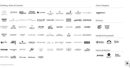 Amazon Private Label Brands 1