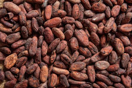 Foto Granos De Cacao