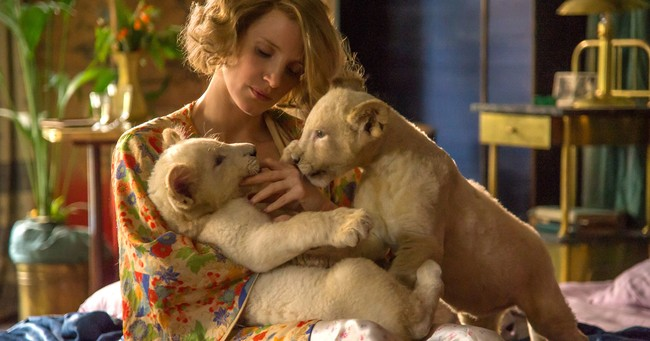 Jessica Chastain Zookeepers Wife