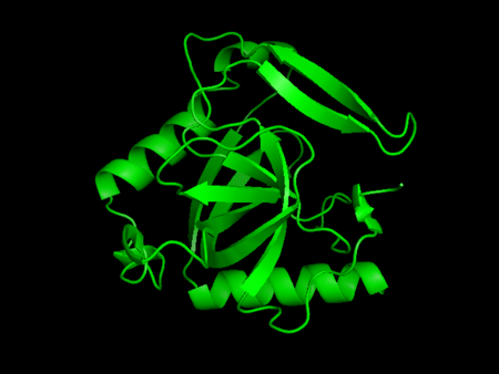 Lo mejor de Vitónica en 2013: proteínas