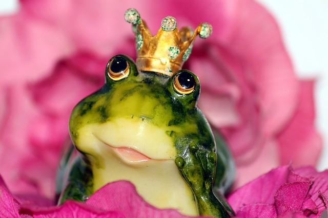 Sapo con corona.