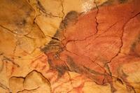 Cueva de Altamira ¿Cómo hacer para poder visitarla?