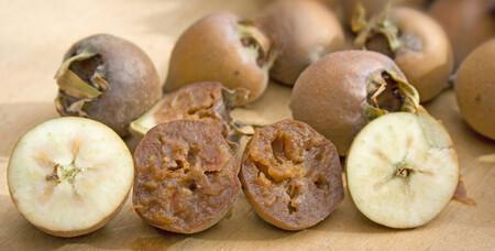 Níspola o níspero de invierno, la olvidada fruta que es un manjar cuando empieza a pudrirse
