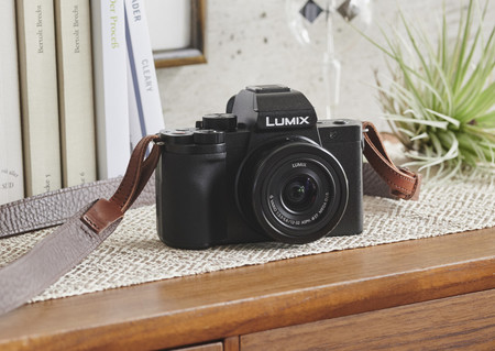 Panasonic Lumix G100 08