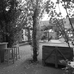 Foto 8 de 8 de la galería moto-z2-force-fotografias-en-blanco-y-negro en Xataka