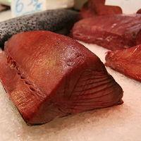 Bonito y atún: ¿en qué se diferencian?