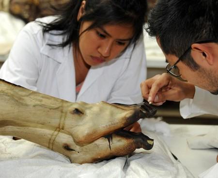 Hallan escultura religiosas en estado de México que revelan documentos de hace 200 años