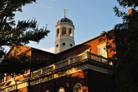 Un nuevo estudio de Harvard revela los beneficios de las gangas. Cazando gangas