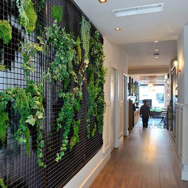 Las ventajas del diseño biofílico o de incluir plantas y zonas verdes en interiores y en espacios urbanos