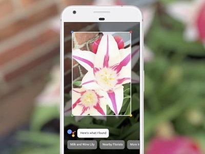 Los Samsung Galaxy S8, Note 8 y S9 empiezan a recibir Google Lens en la versión cámara