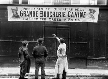 Carnicería de perros en París