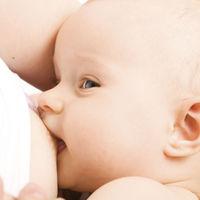 Por qué los bebés que toman leche materna no necesitan comer yogures ni beber leche de vaca