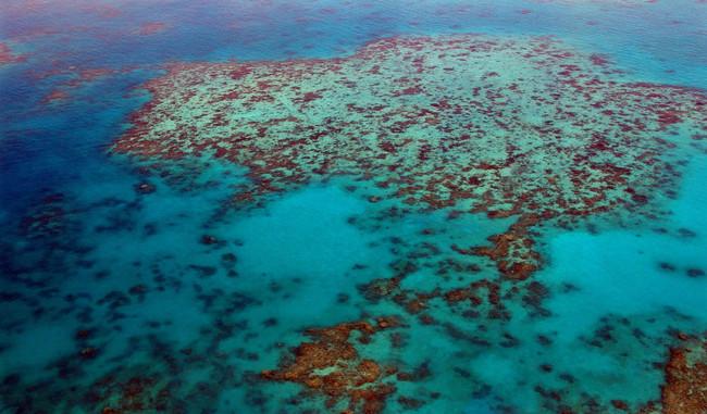 Great Barrier Reef 261720 1280