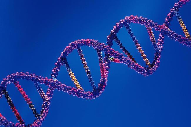 Project Baseline, Google quiere utilizar información genética para encontrar la salud perfecta