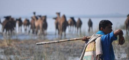 Viaje a Guyarat, India en la frontera, la tierra donde nació y se crió Ghandi