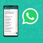 La OMS lanza un bot oficial para WhatsApp para mantenerte informado del coronavirus