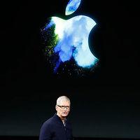 Apple logra compensar la caída del 11% de ingresos del iPhone con buenas cifras en wearables y servicios
