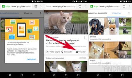 Guardar Imagen Google