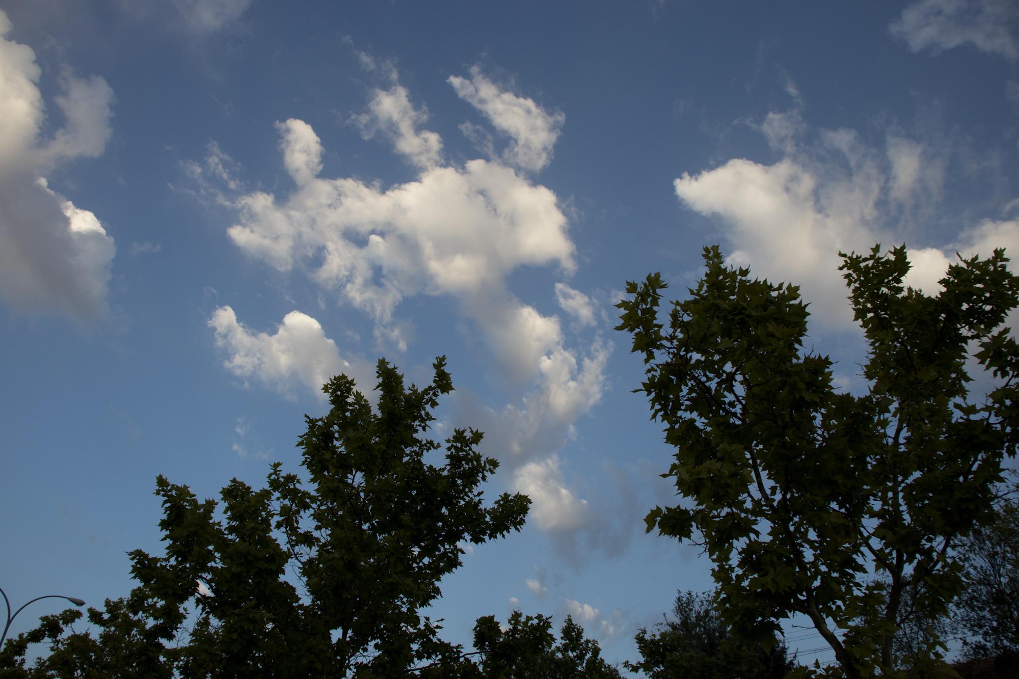 Foto de Muestras Canon EOS 250D (34/38)