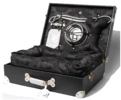 Lujoso maletín de viaje para mascotas