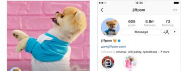 Cómo activar IGTV en tu perfil y todos los detalles del YouTube de Instagram