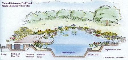 piscina-natural.jpg