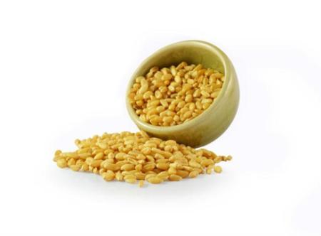 El kamut, un tipo de trigo fuera de lo común