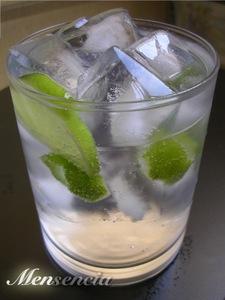Cómo hacer un Gin Tonic perfecto