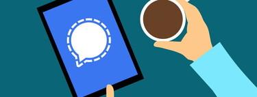 Así es Signal, la app de mensajería segura y privada que crece como la espuma a costa de la huída de WhatsApp