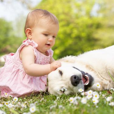 Mi hijo tiene miedo a los perros: como puedes ayudarle a superarlo