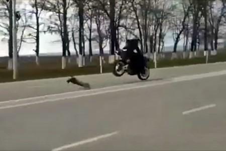 Una carrera entre un coche radiocontrol y una moto, o cómo hacer que dos cabezabuques se queden sin juguetes