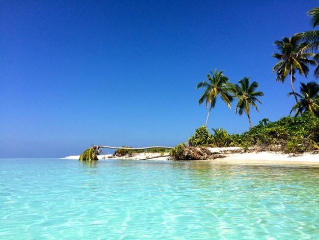 Castaway Island Maldives 8