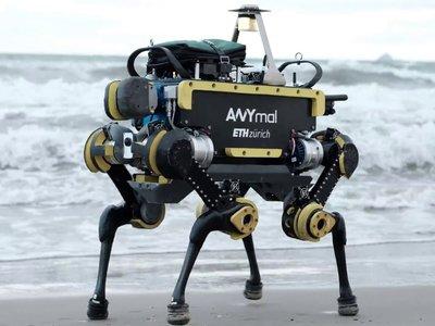 Este sorprendente robot cuadrúpedo es autónomo, mantiene el equilibrio y hasta sabe pedir un ascensor