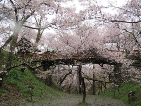 Takato Castle Ruins Dancingnomad3